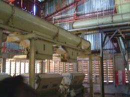 珍しいローラージンの機械2